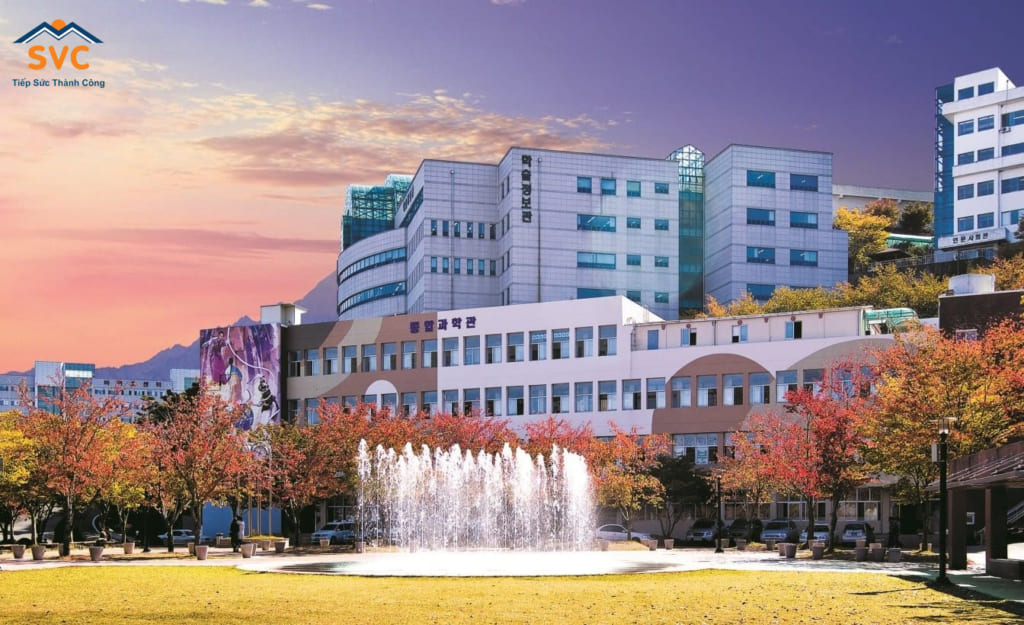 Đại học Daegu Haany
